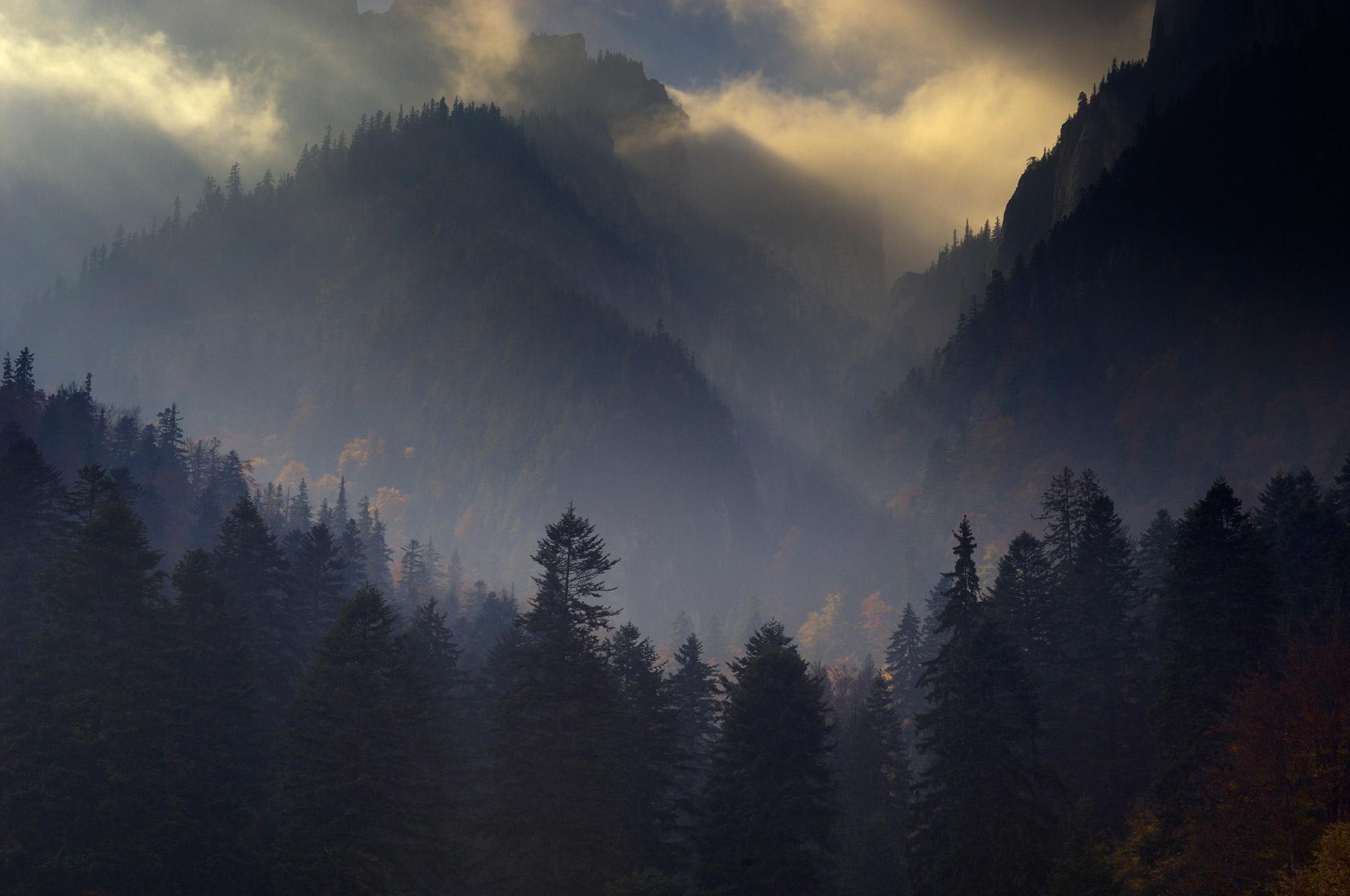 The Carpathian Mountains, Romania