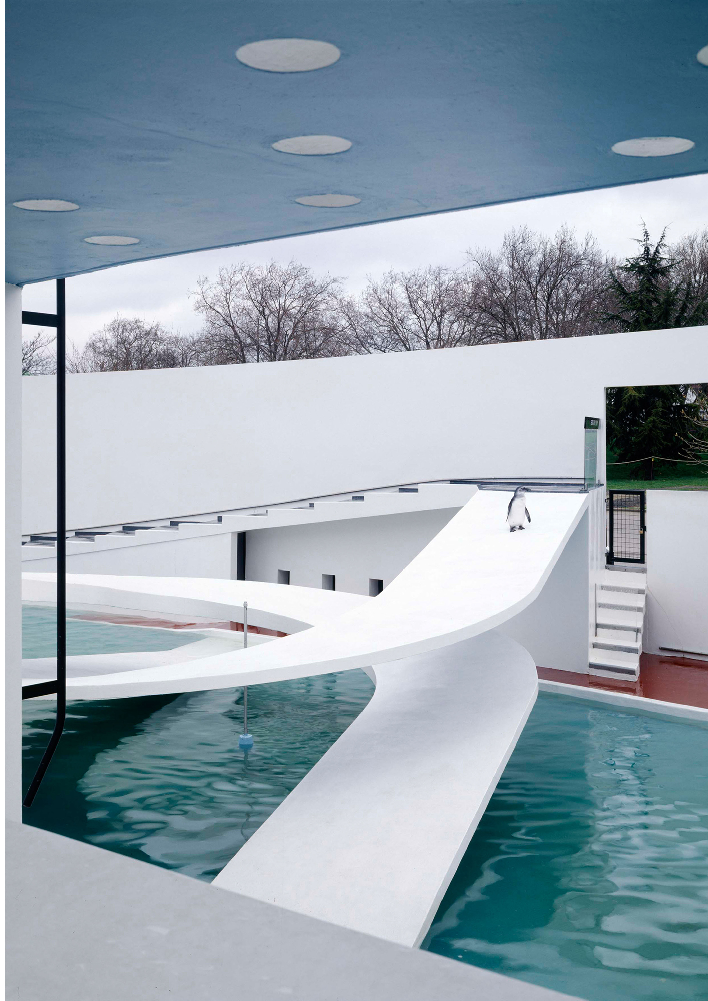 Tecton's Bauhaus-inspired penguin pool at the London Zoo, Alamy