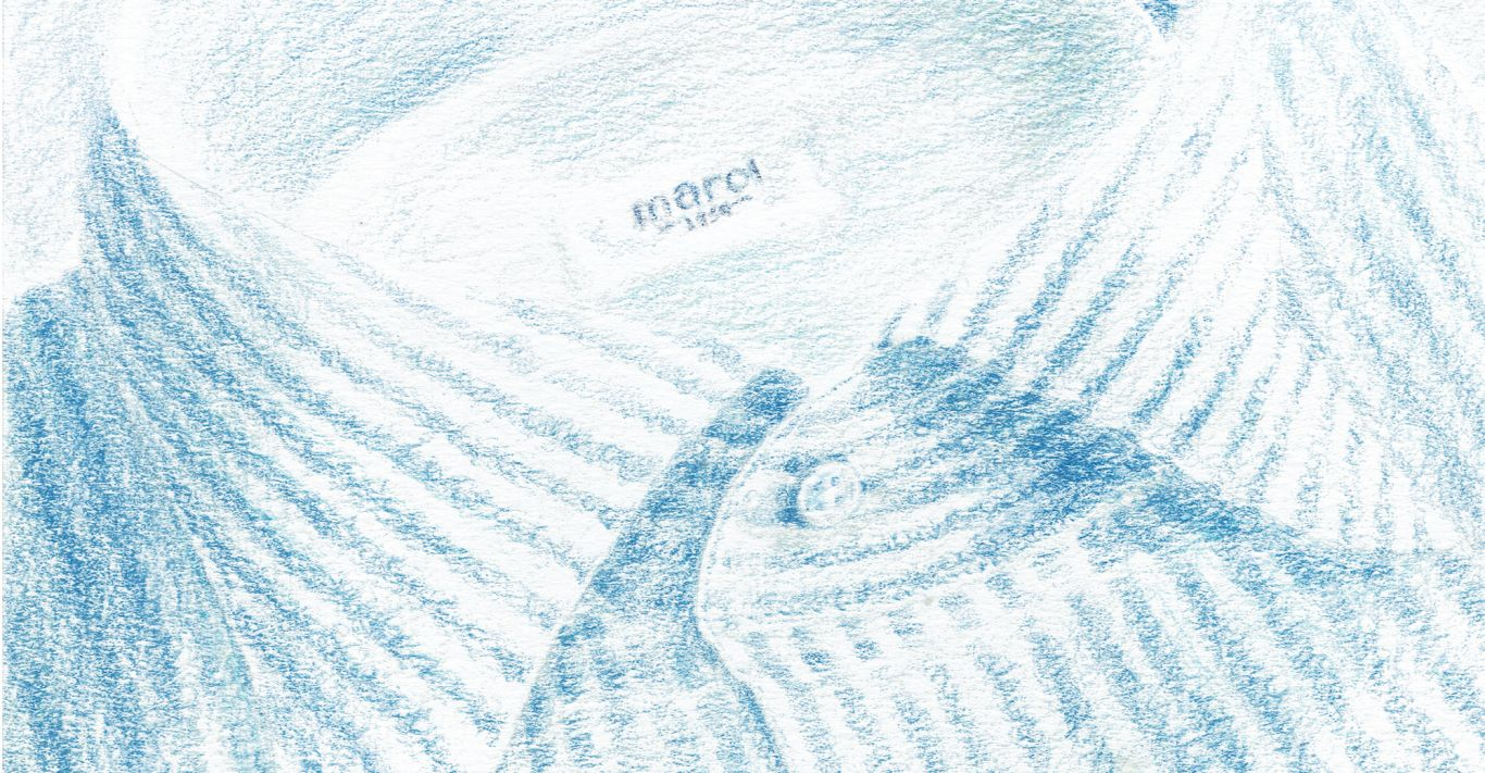 Illustration: Furze Chan