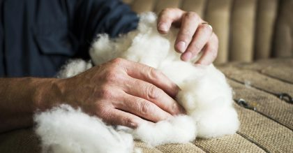 Cashmere wool is biodegradable